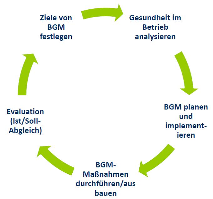 BGM_Grafik_Kreis
