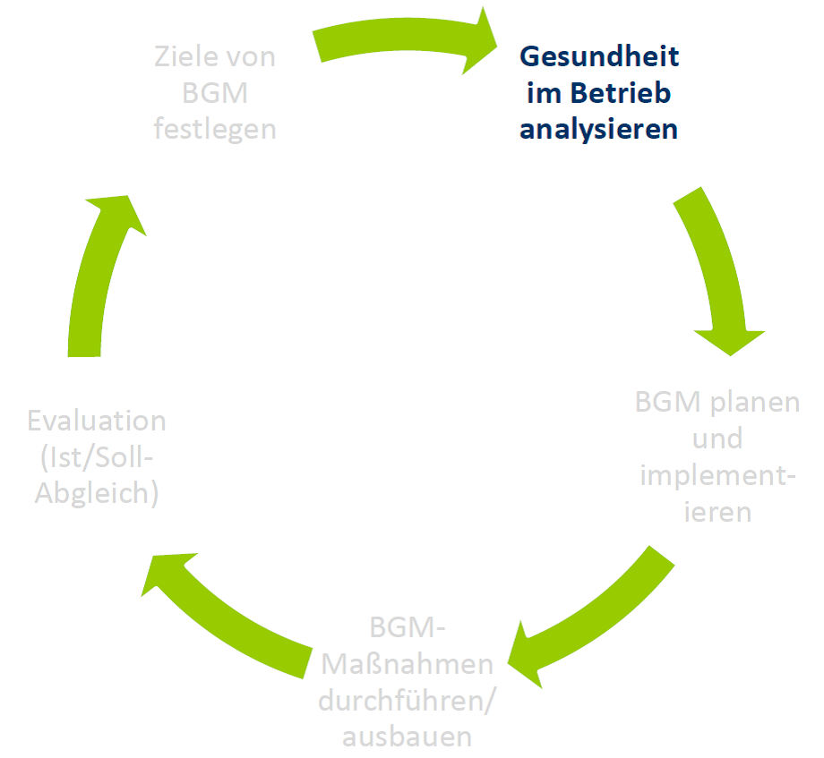 analyse und evaluation